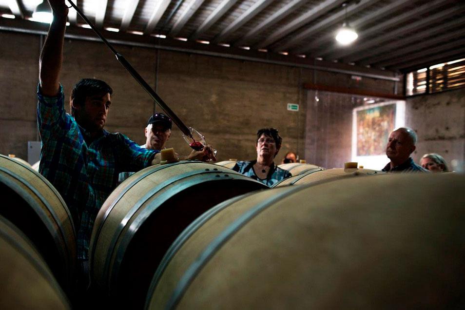 vinicolas-canelones-uruguai-um-cafe-pra-dois-07